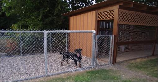 Our Kennel